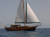 Paradise sailing boat turkish gulet